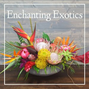 Enchanting Exotics